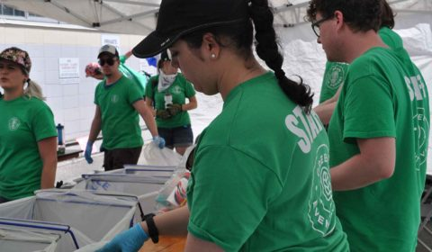 waste sorting staff green events services calgary